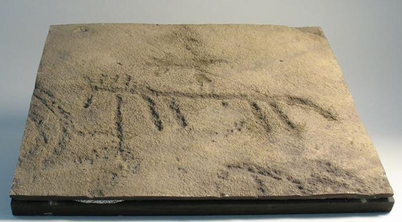 Gravure rupestre de l'âge du bronze.