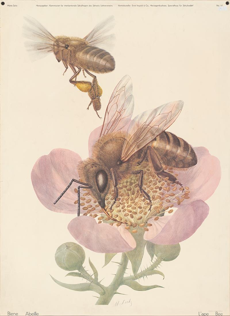 Tableau mural sur le thème des abeilles.