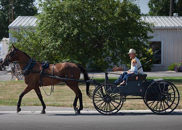 """Die Amish benutzen die typischen schwarzen """"Buggys"""" ohne Gummireifen."""