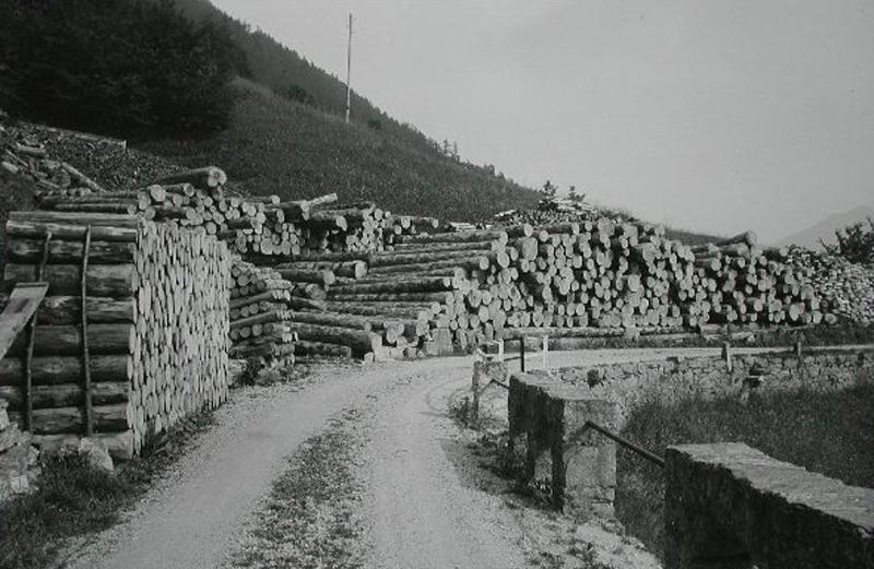 Im 19. Jahrhundert boomte die Holzwirtschaft in der ganzen Schweiz.
