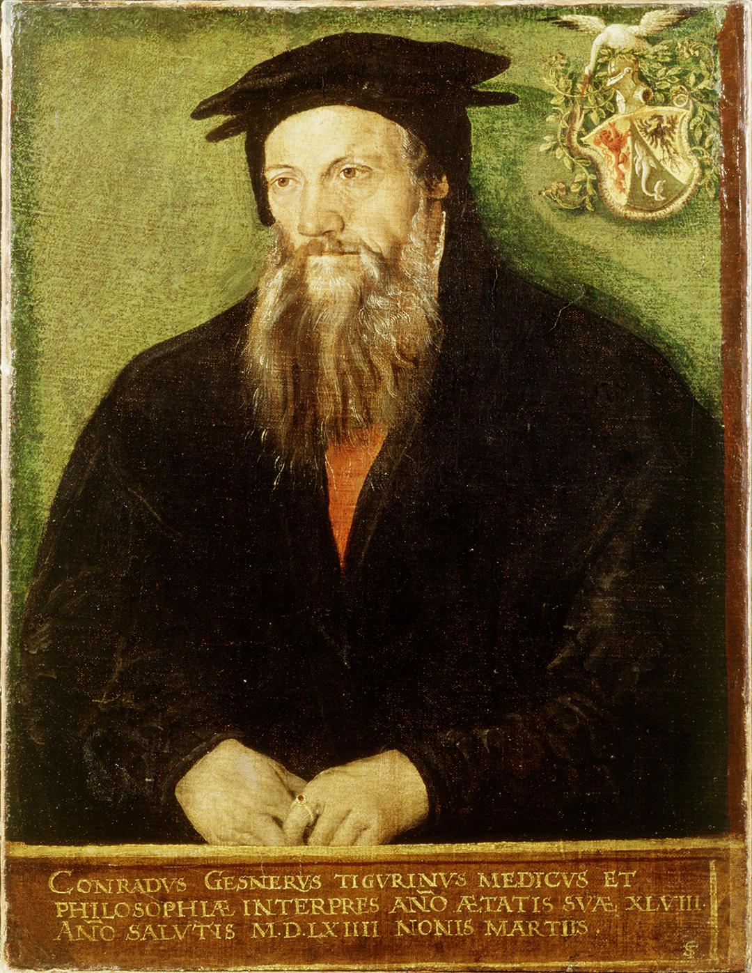 Tobias Stimmer, Bildnis Conrad Gessner, 1564.