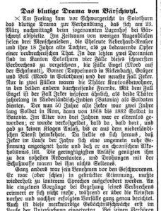 Artikel im «Bund» vom 25. Mai 1896.